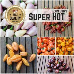 Seed Assortment 'Super Hot Exclusive'