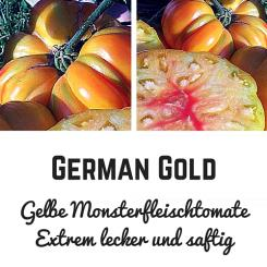 BIO German Gold Tomatensamen (Fleischtomate)