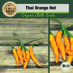 Organic Orange Lantern Chilli Seeds