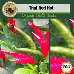 Organic Thai Red Hot Chilli Seeds