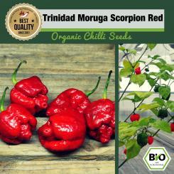 Organic Trinidad Moruga Scorpion Red Chilli Seeds