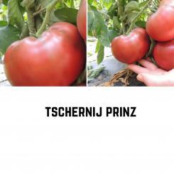 BIO Tschernij Prinz Tomatensamen (Fleischtomate)