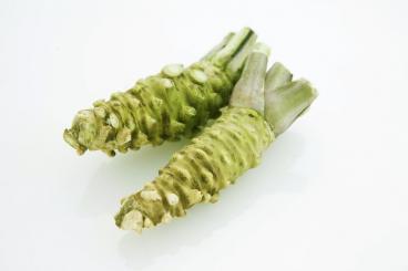 ECHTER frischer Wasabi