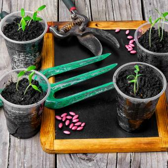 Garden Boost Sheep Wool - Sheep Wool Pellets for one plant!