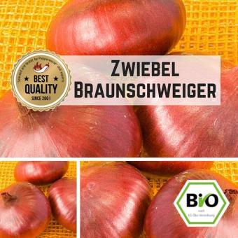 Zwiebel (Braunschweiger) Samen