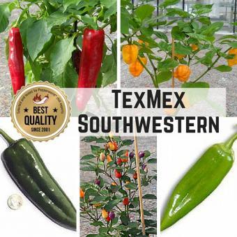 """Saat Sortiment """"TexMex - Southwestern"""""""