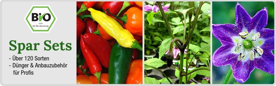 Spar Sets Bio Pflanzen